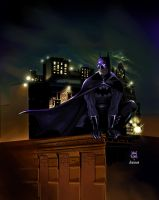 an eye on gotham by Nardius