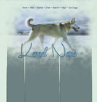 Premade Siberian Husky Layout by Oliver20