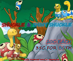 Shuckle Banner by tropical395