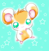 hamster by mirakitty
