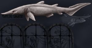 Goblin Shark by calicogoat