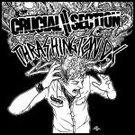 Crucial Thrashington - split by scumbugg