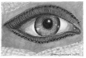 The Eye by theotherside