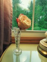 A Rose from Someone by EmmieBeeCreations