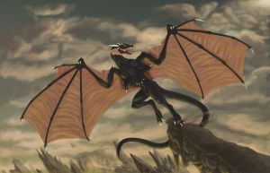 Dragons flight by Clone-Trooper