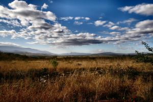 South-Africa 2007 .2 by DrHel