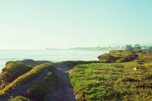 A Stroll Along the California Coast by LoloHalakahiki