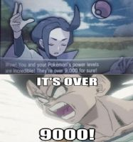 My Pokemon's power level is over 9000 by HikariKazumi