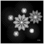 Firework For The Colorblind by baba49