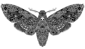 Death Moth by SearingLimb