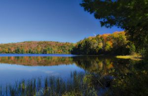 Lake while the Indian Summer in Ontario by sinawali