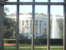 The White House by Flaherty56