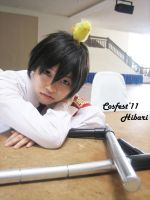 hibari_1 by glas-of-ice