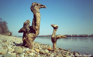 Land art Driftwood art in Hungary by tamas kanya by tom-tom1969