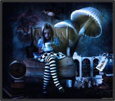 Alice by ShaneGallagher