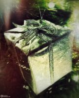 Gift by boldsoul