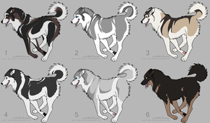 Malamute Adoptables CLOSED by ShockTherapyStables