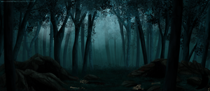 Dark Forest - Commission by ShadeDreams