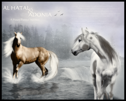 Al Hatal and Adonia by Syeiraxx