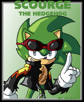 Hedgehog: Scourge by ThePandamis