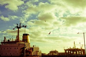 Port by Carenza