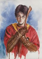 Harry Potter by maya-Notliketheother