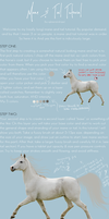 tutorial :: manes + tails by xglassraindrops