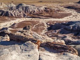 Petrified Forest: Blue Mesa by j-ouroboros