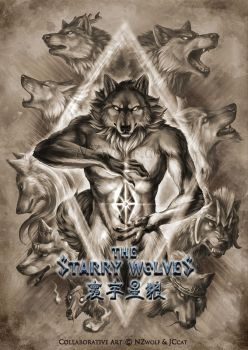 The Starry Wolves Postcard by J-C