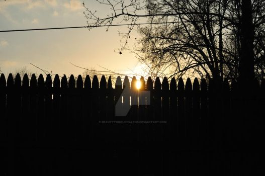 Sunset over the back fence by beautythroughalens