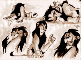 Lion King: Scar -sketches- by Leeuwtje