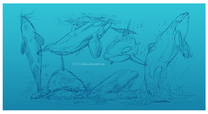 A Study in Orca's by Jullelin