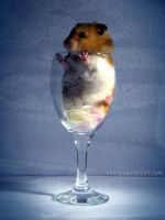 Hamster Wine - 5 by eldris