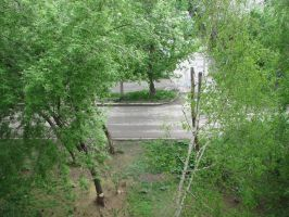 Stock: Road/bushes by Think-Outside-Of-Box