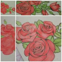 Roses by Mia-Middleford