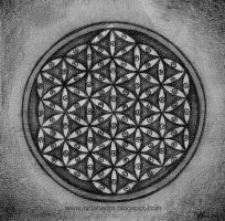 Flower of Life - visions by Myrinihanna