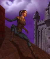 Thief on a roof by AleksiAh