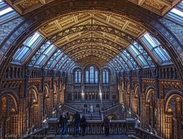 Natural History Museum by Syntheta-NZ