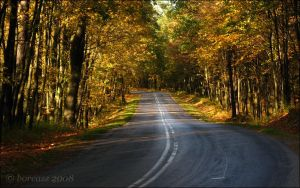 Autumn road by boreasz