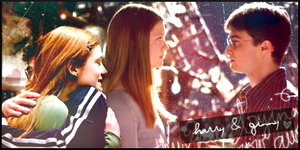 Harry and Ginny by snapperz48