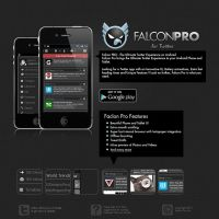 Falconpro Concept Webseite by NetGhost03