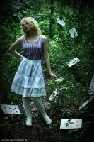alice in wonderland: 4 by cainess