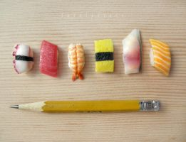 miniature sushi - assorted nigiri by FatalPotato