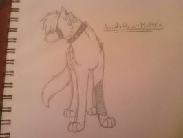 100 watchers request: AcidxRain-Hatena by sharktaiIs