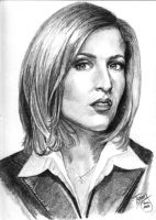 Gillian Anderson by TerryXart