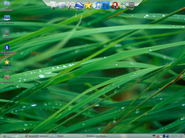 XP to Mac OS X Screenshot by iTed