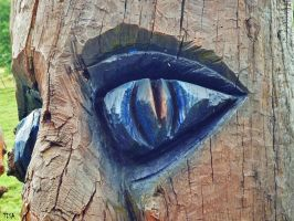 BLUE EYE by isabelle13280