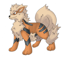 Arcanine by himanuts