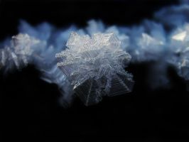 Crystalice IV by Photopathica