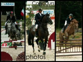 Concours d'obstacle by Citron--Vert